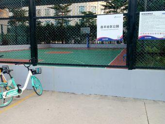 昌平社区公园篮球场