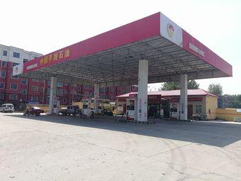 中国平舆石油