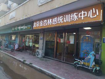 北京金杏林感统训练中心(廊坊分中心)