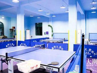 海纳乒乓球培训