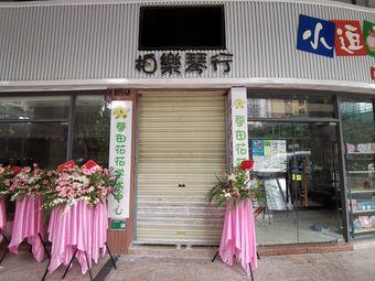 柏乐琴行(维港形象店)
