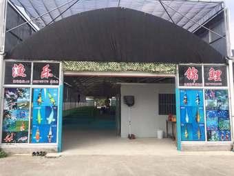 苏州渔乐锦鲤养殖场(三角嘴锦鲤养殖场)
