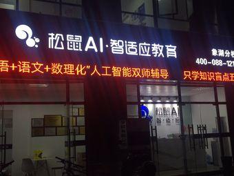 松鼠AI·智适应教育(象湖分校)