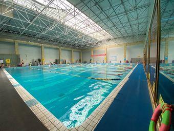 中体游泳培训
