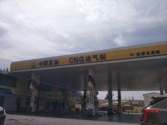 中国京油CNG油气站